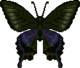 Peacock Butterfly (City Folk texture).png