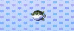 NewLeafBlowFish.jpg