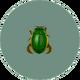 Diving Beetle (City Folk).png