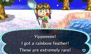 NL-Festivale Rainbow Feather Caught
