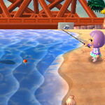 List Of Fish By Shadow Size Animal Crossing Wiki Fandom New horizons (acnh) for the nintendo switch. list of fish by shadow size animal