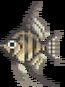Angelfish (Wild World).png