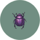 Dung Beetle (City Folk).png