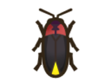 Guide:June bug list (New Horizons)