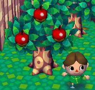 Árbol Simple Con Manzanas