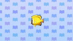 ButterflyfishNL.png
