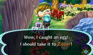 Bunny day egg fishing