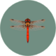Red Dragonfly (City Folk).png