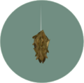 Bagworm (City Folk).png
