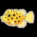 Fish fst1603.png