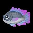 Fish Thirapia.png