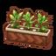 Int foc41 plant cmps.png