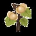 Ev flower 025 02.png