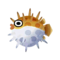 Puffer Fish.png