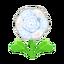 Ev flower 034 00.png