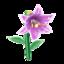 Ev flower 020 02.png