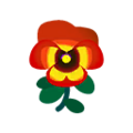 Orange Pansies.png