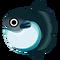 Fish Manbou.png