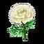 Ev flower 024 022136.png