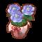 Int gar07 flower3 cmps.png