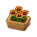 Furniture Potted Coral Pansies.png