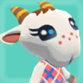 Chevre Picture.png