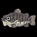 Fish tigernose.png