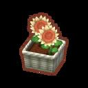 Int 2480 flower2 cmps.png