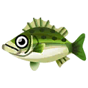 Fish fst0003.png