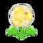 Ev flower 034 01.png