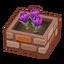 Int gar20 flower2 cmps.png