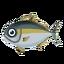 Fish Buri.png