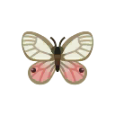Insect SukashiR.png