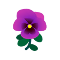 Purple Pansies.png