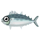 Fish Sawara.png