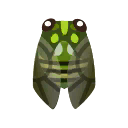 Insect Minmin.png