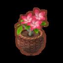 Int gar01 flower3 cmps.png