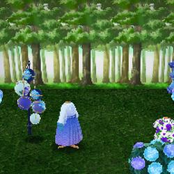 Hydrangea Tatami Room