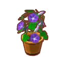 Int gar02 flower2 cmps.png