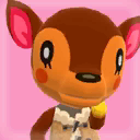Fauna Picture.png