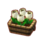 Furniture Potted White Tulips.png