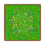 Floor flowers grass.png
