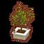 Int foc43 tree cmps.png