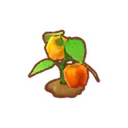 Farmer's Peppers