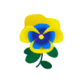 Yellow-Blue Pansies.png