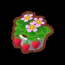 Int 2250 flower2 cmps.png