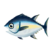 Island Tuna
