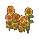 Int 2480 sunflower cmps.png