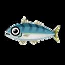 Atlantic Mackerel.png