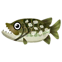 Fish pike.png